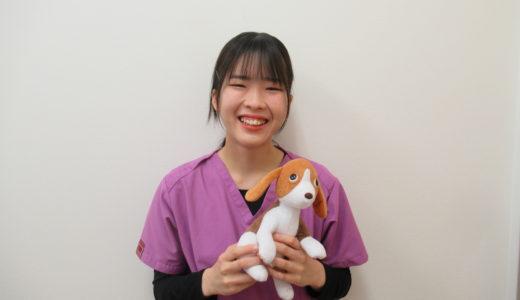 動物看護師:芳野 夢乃