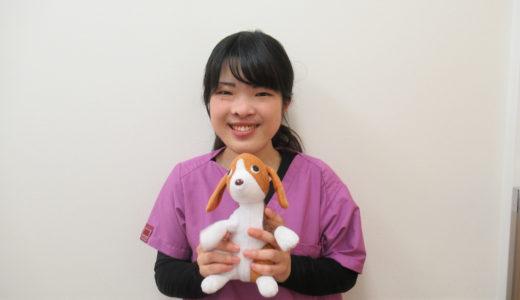 動物看護師:福元 郁美