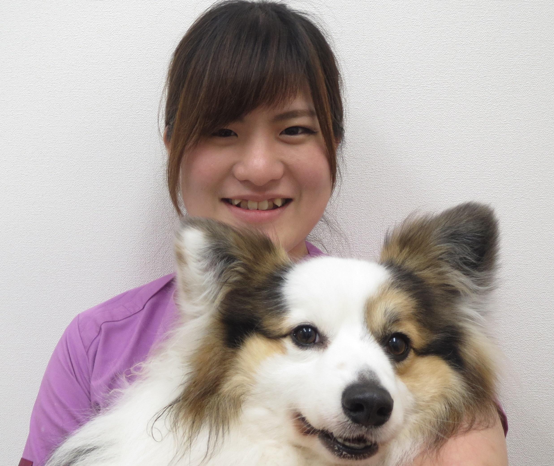動物看護師:吉村 美琴